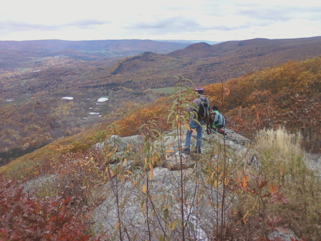 greylock-glen-bushwack-october-2014_02